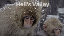Hellys Valley