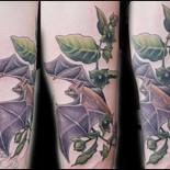 Bat & Nightshade