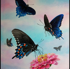 California Pipevine, Swallowtail, Butterfly, Zinnia, acrylic, painting, flower, fly, flutter