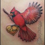 A cardinal for Dad