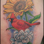 Cardinal, Gardenia and Sunflower