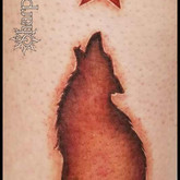 Wolf and Star