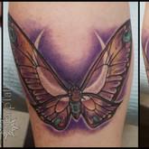 mothra, mom, crescent, moon, gemini, memory, eyes, sharptattoos, tattoo, beautiful, moth, lunar,