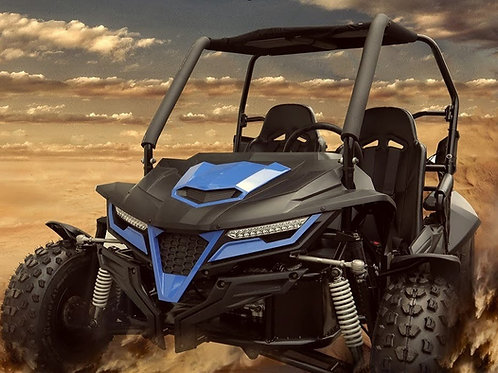 2021 Trailmaster Cheetah Dune Buggy PLEASE CALL OUR STORE TO CHECK STOCK LEVEL