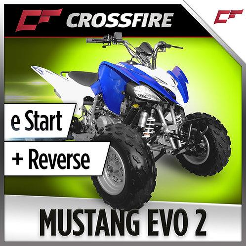 Crossfire Mustang Evo 2 2020