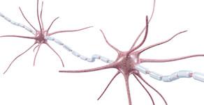 Neurostress und Neurostresstherapie