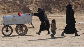 Gestion des «combattants terroristes étrangers», de leurs enfants et lutte contre le terrorisme