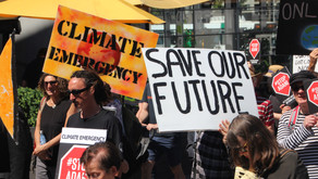 What could and should happen to climate action following the Covid-19 lockdown
