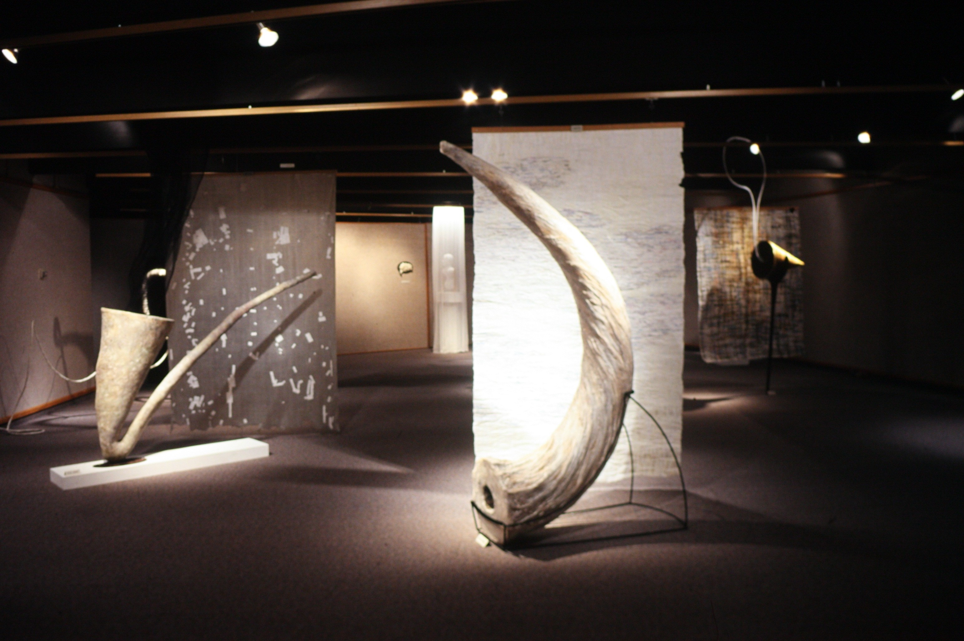 Installation view of 'Big Horn'