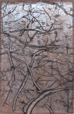 Tissue Sample: Roots | Bone Cells