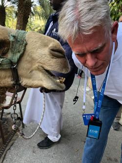 Camel telling a really bad joke to Rev D