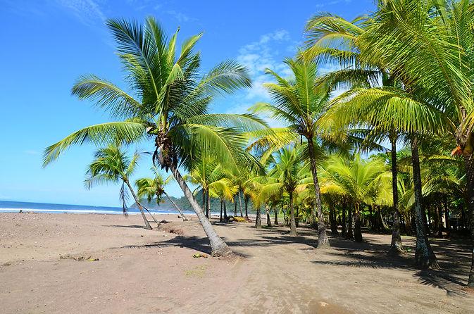 jaco-beach.jpg