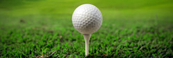 Illustration of a golf ball on a green meadow_edited