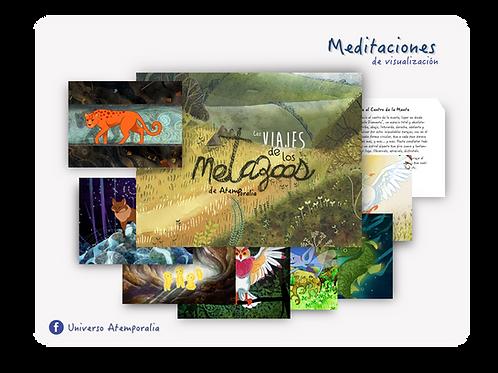 Láminas de los Metazoos