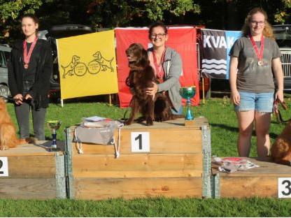 SM «Rule» von «Jugend+Hund» / Championnat suisse de «Rule» de « Jeunesse + Chien »