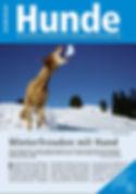 Winterfreuden mit Hund.JPG