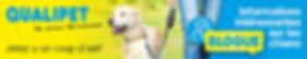 190325_SKG_QP-Blog_468x89px_FR.jpg