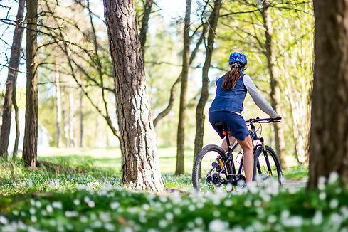 Cykel 4.jpg