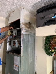 Damaged and Moldy Unit Being Replaced
