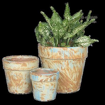 Indoor Pottery Pots.png