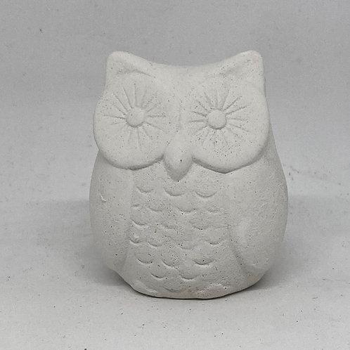 Short Owl