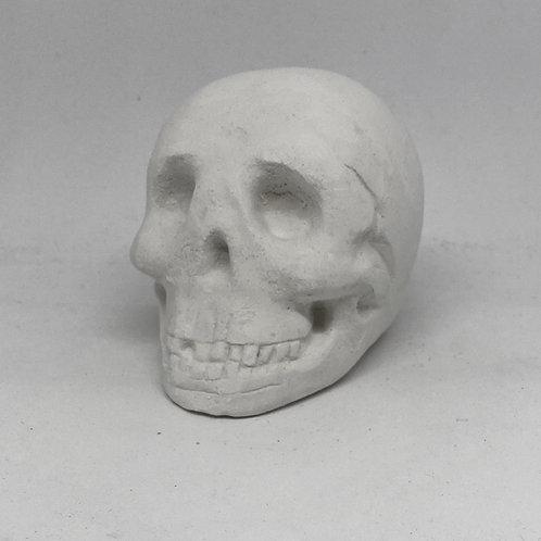 Skull small