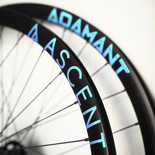 ADAMANT Alloy Fixed Gear Wheels