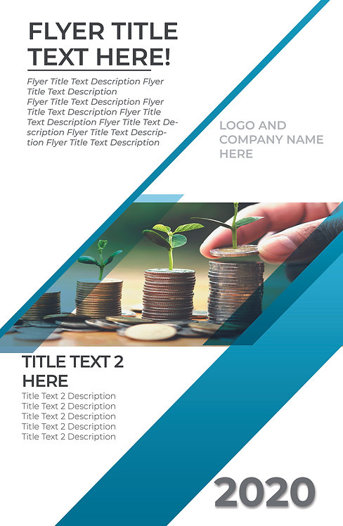 25-1000 High Gloss Business Flyer, 8.5X11-Two Sides Modern Financial Design