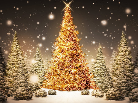 Christmas Holiday Arrangements