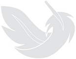 feather icon light grey and white.png