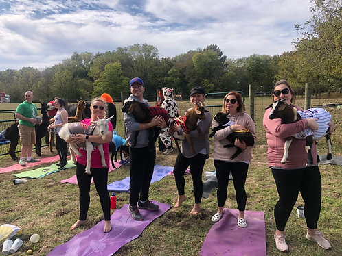 Private Goat Yoga Party @ Willow City Farm