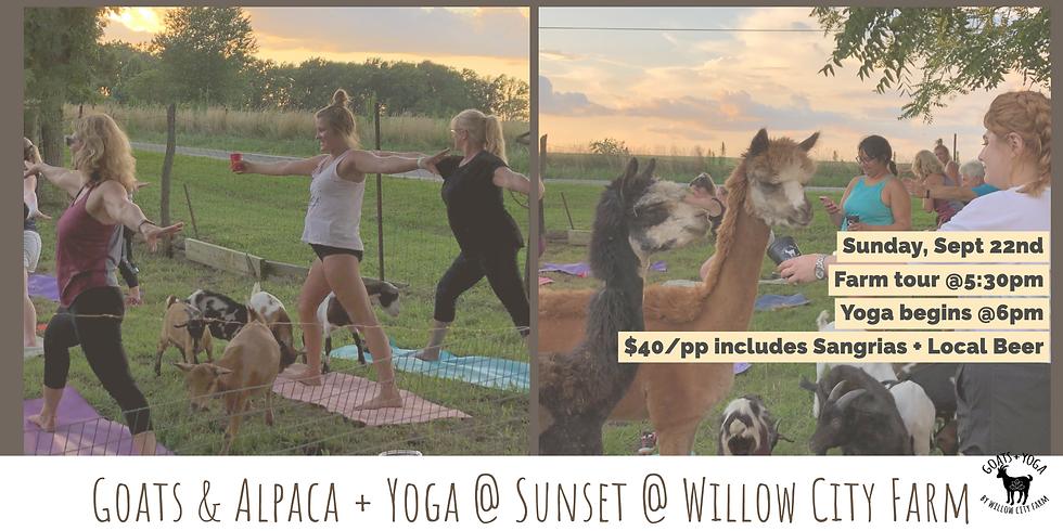 Goats & Alpacas + Yoga @ Sunset   - Willow City Farm, Pleasant Plains, IL