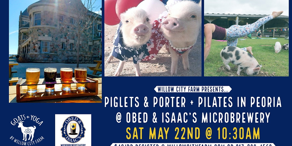 Piglets & Porter + Pilates @ Obed & Isaac's Microbrewery- Peoria