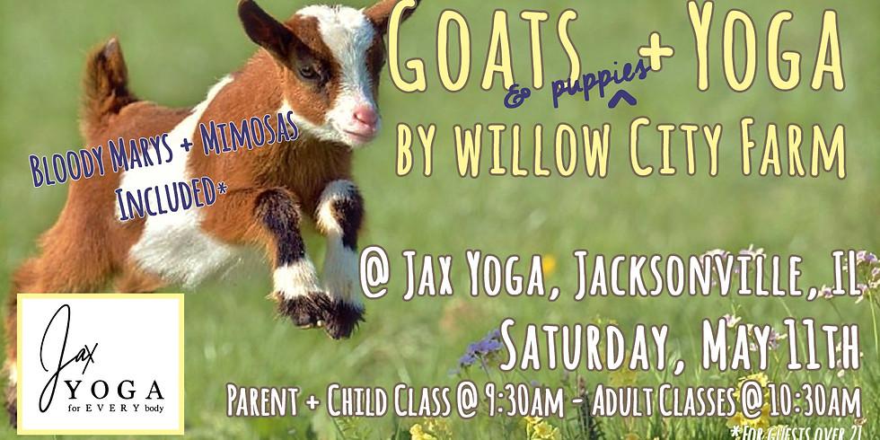 Goats & Puppies + Yoga @ Jax Yoga
