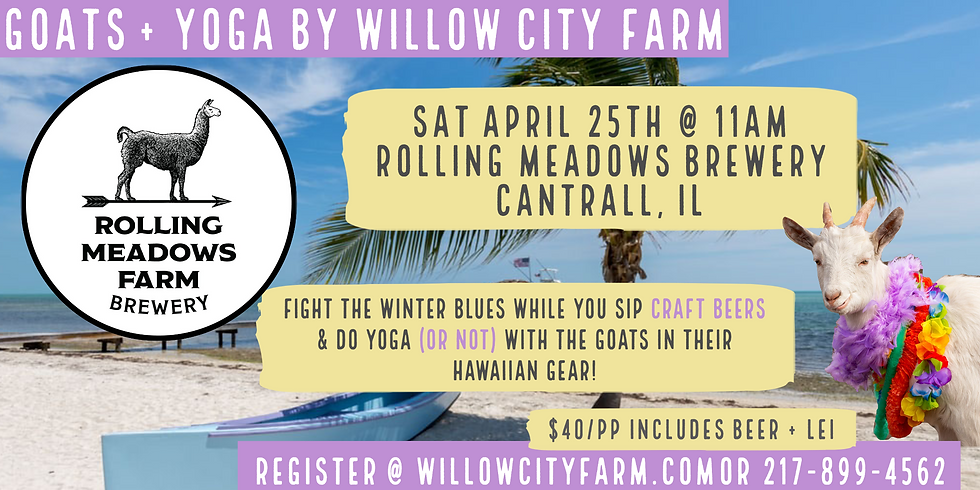 Baby Goats + Yoga Beach Party @ Rolling Meadows