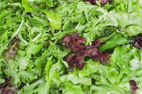 Lettuce Mix (Large Bag)