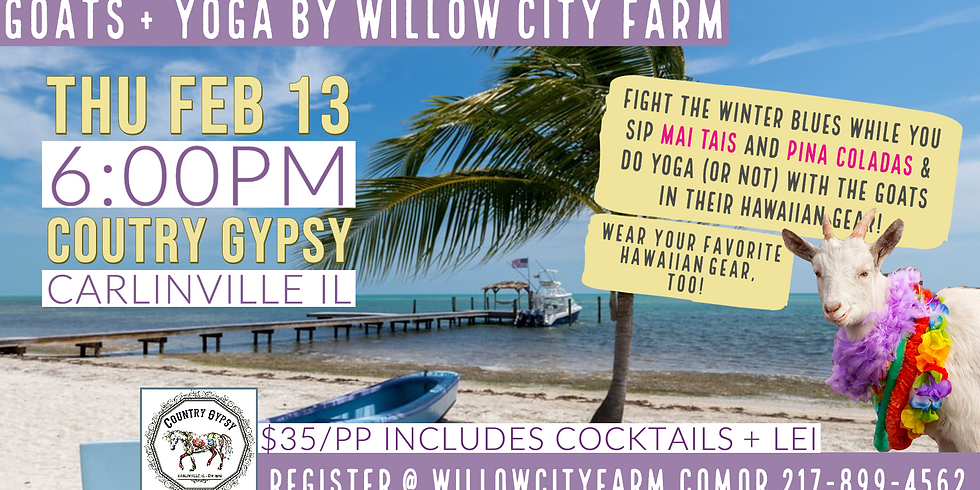 Goats + Yoga Beach Party @ Country Gypsy, Carlinville, IL