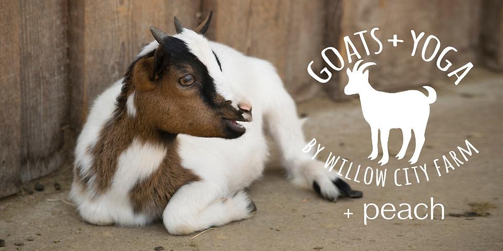 Discover Peach Clothing w/ Goats + Yoga - free!