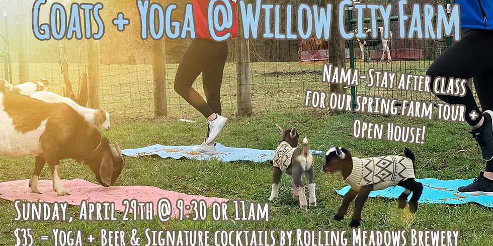 Goats + Yoga @ Willow City Farm