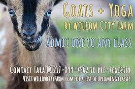 goat yoga ticket.jpg