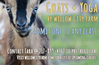 Goats + Yoga Ticket