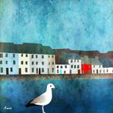 Galway Gull Digital Illustration, 2021