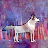 Introducing Tak - The Grey Wolf Digital Illustration, 2021