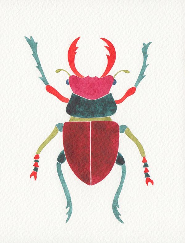 deer bug