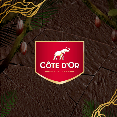 Côte d'Or Digital and TV Campaign