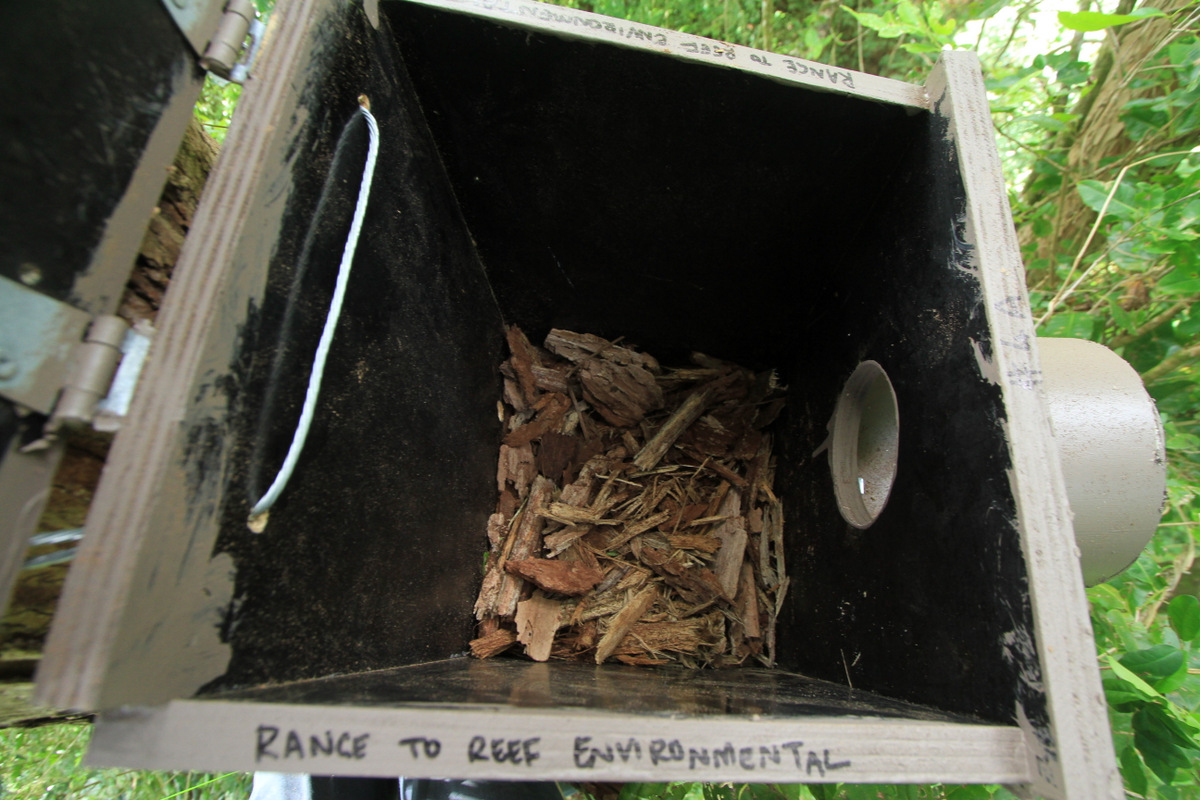 Nesting substrate