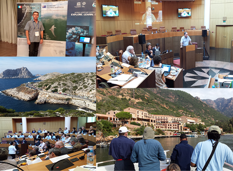 Second World Heritage Marine Site Managers Conference in Corsica, France