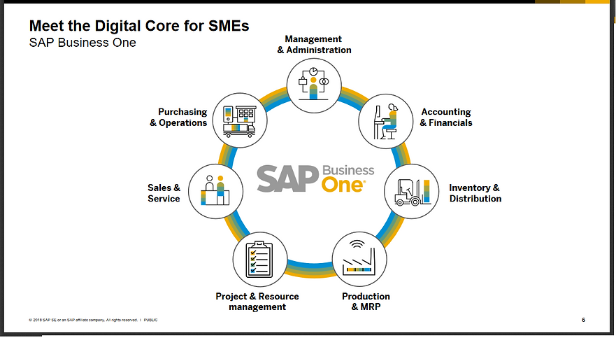 SAP_Business_One pdf.png