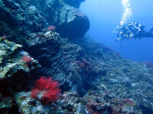 submarinismo.jpg
