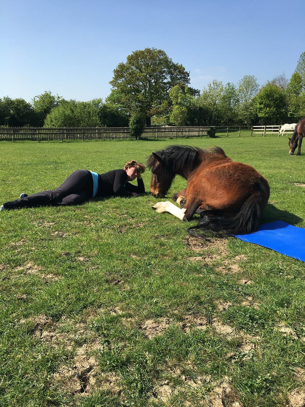 Yoga ponies